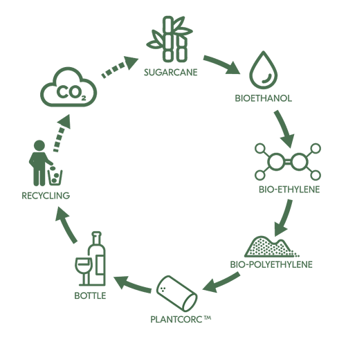 nomacorc-green-line-cycle