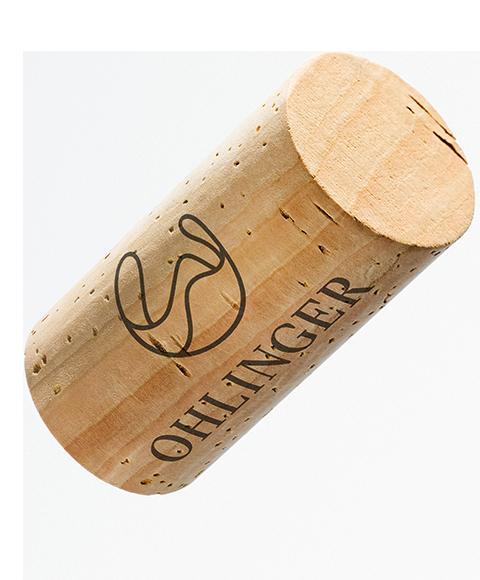 ohlinger-selektion-2018-l